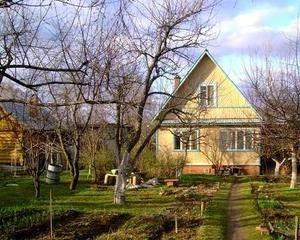 Летняя загородная аренда-2014: сезон открыт - Фото