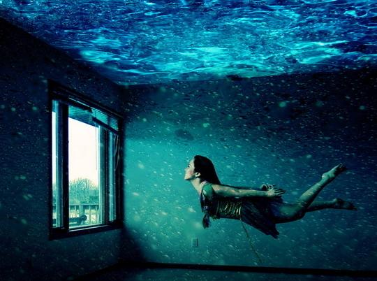 Как рыба в воде: чему нужно научиться, чтобы создать непревзойденный дом