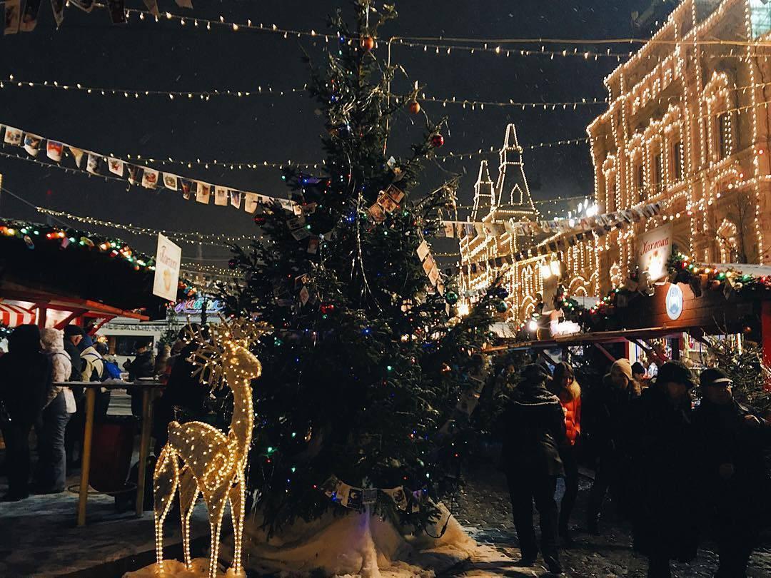 В Москве установят полсотни новогодних елок