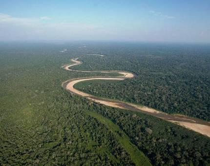 Минприроды хочет разрешить капстроительство в рекреационных зонах лесов - Фото