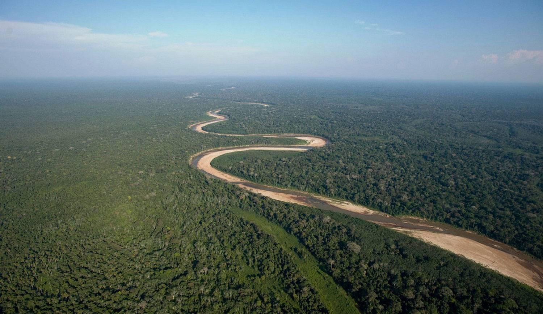 Минприроды хочет разрешить капстроительство в рекреационных зонах лесов