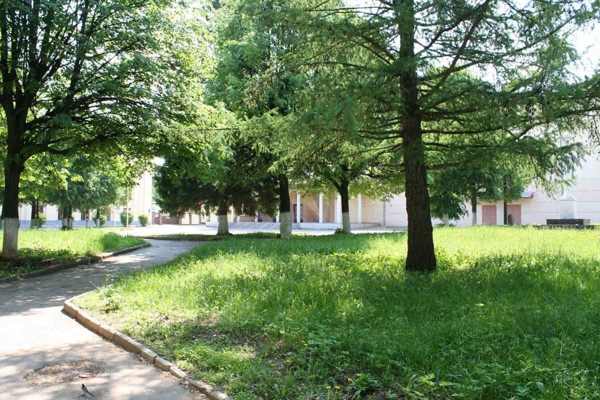 Вместо строительства гостиницы на севере Москвы проведут озеленение