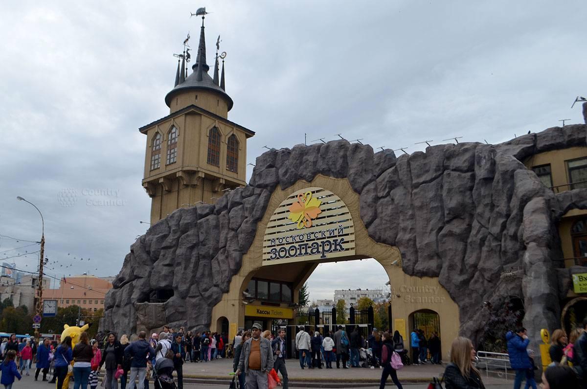 Весной следующего года в Москве после реконструкции откроется детский зоопарк