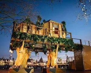 На деревьях в центре Лондона появился отель - Фото