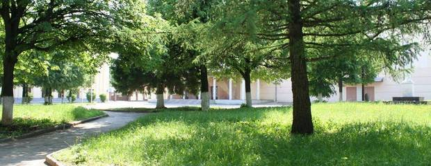 Вместо строительства гостиницы на севере Москвы проведут озеленение - Фото