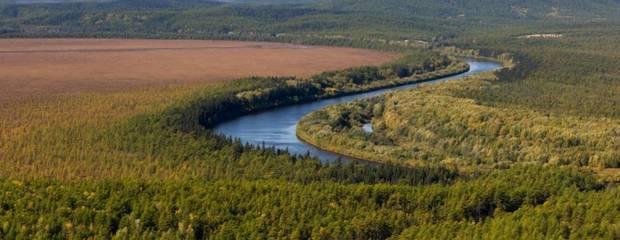 Москвичи и петербуржцы интересуются «дальневосточным гектаром» в Приморье - Фото