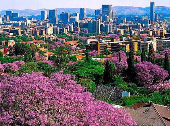 Африканский регион остается самым привлекательным растущим рынком недвижимости