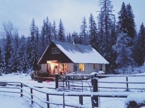 В домах россиян наступает Новый год