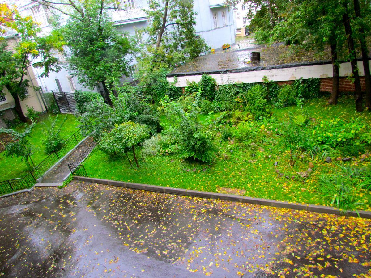 Столичные власти позволят москвичам решить самим, косить ли траву во дворах