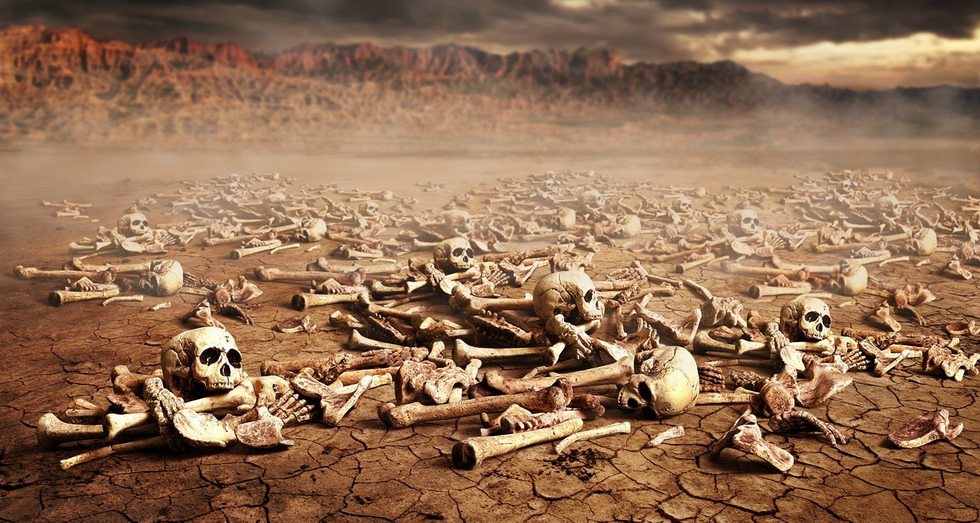 Ученые предлагают возводить города из костей