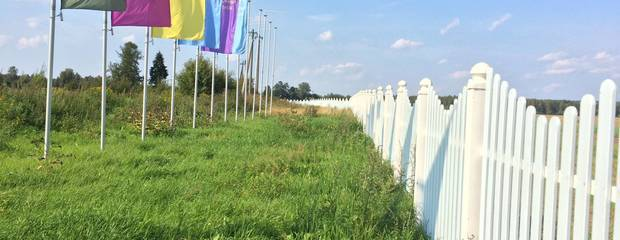 Luonto – европейский подход к русскому бизнесу - Фото