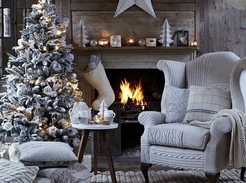 Запах хвои: как выбрать елку на Новый Год