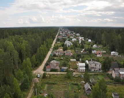 В подмосковных поселках обнаружено до 40% незаконных дач - Фото