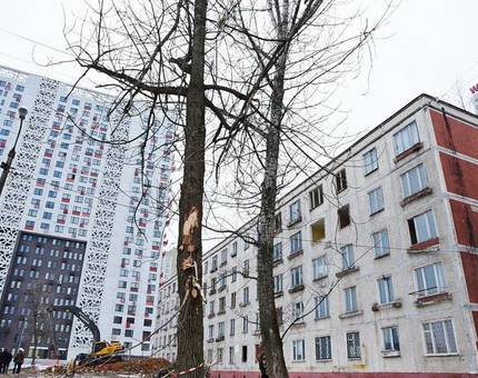 Пятиэтажки изменят расстановку сил в столичном регионе – «Сити-XXI век» о последствиях программы реновации - Фото