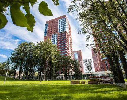В ЖК SREDA появится собственый парк - Фото