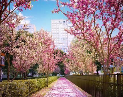 В ЖК Румянцево-Парк доступна услуга фиксации цены квартиры в режиме онлайн - Фото