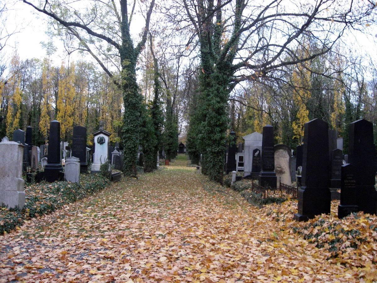 Закон о частных кладбищах в России могут рассмотреть до конца года