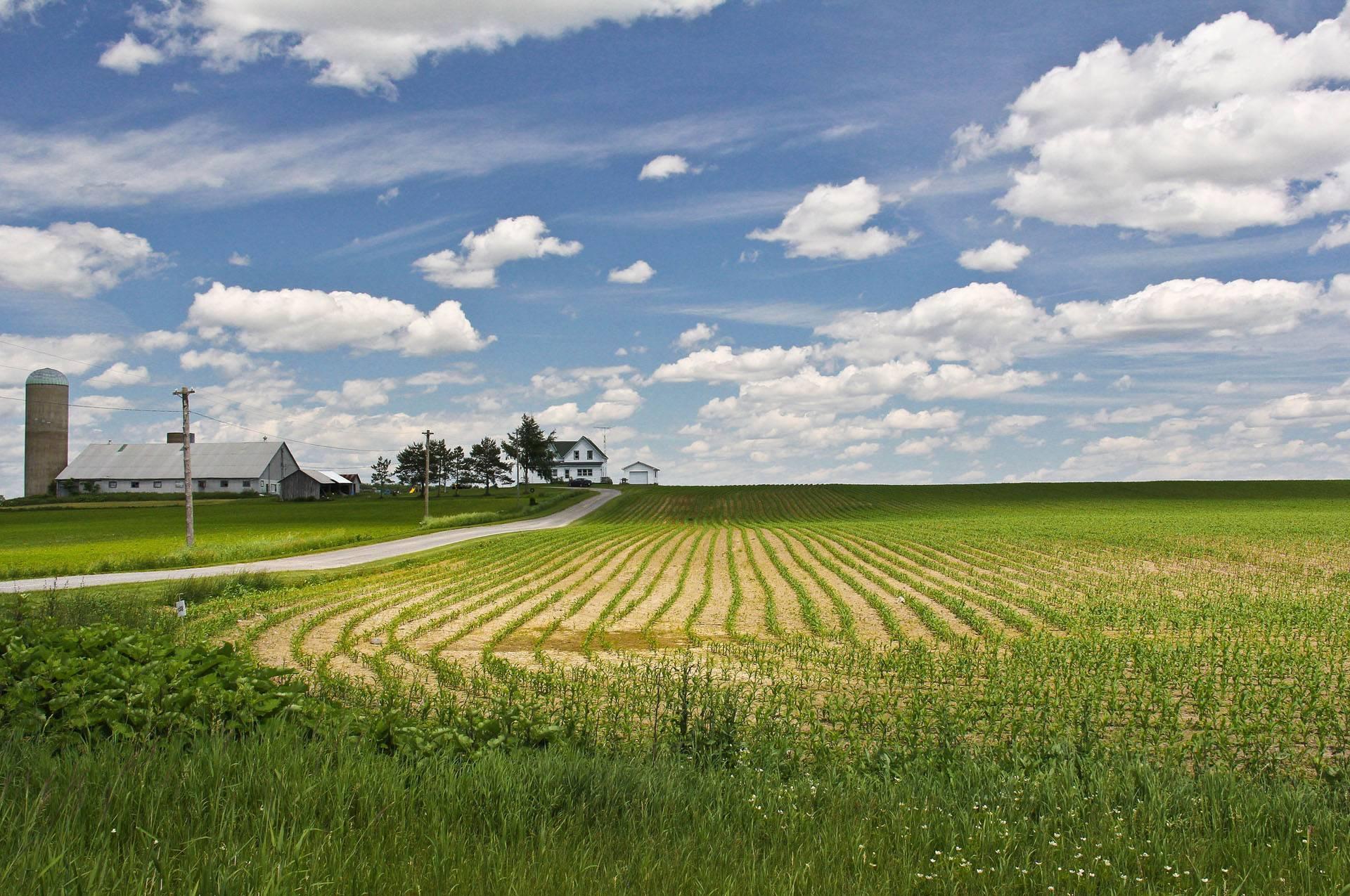 Москвичи и петербуржцы планируют строить дачи на «дальневосточных гектарах»