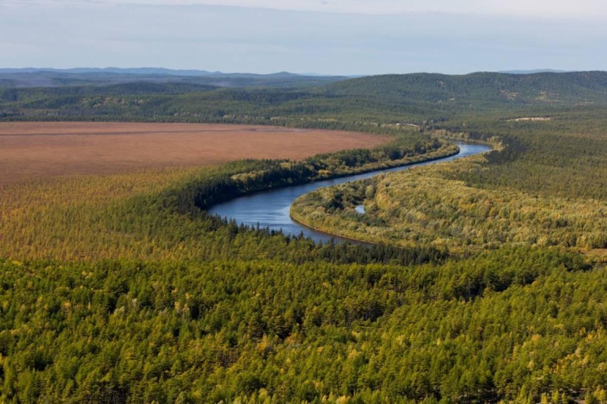 Москвичи и петербуржцы интересуются «дальневосточным гектаром» в Приморье