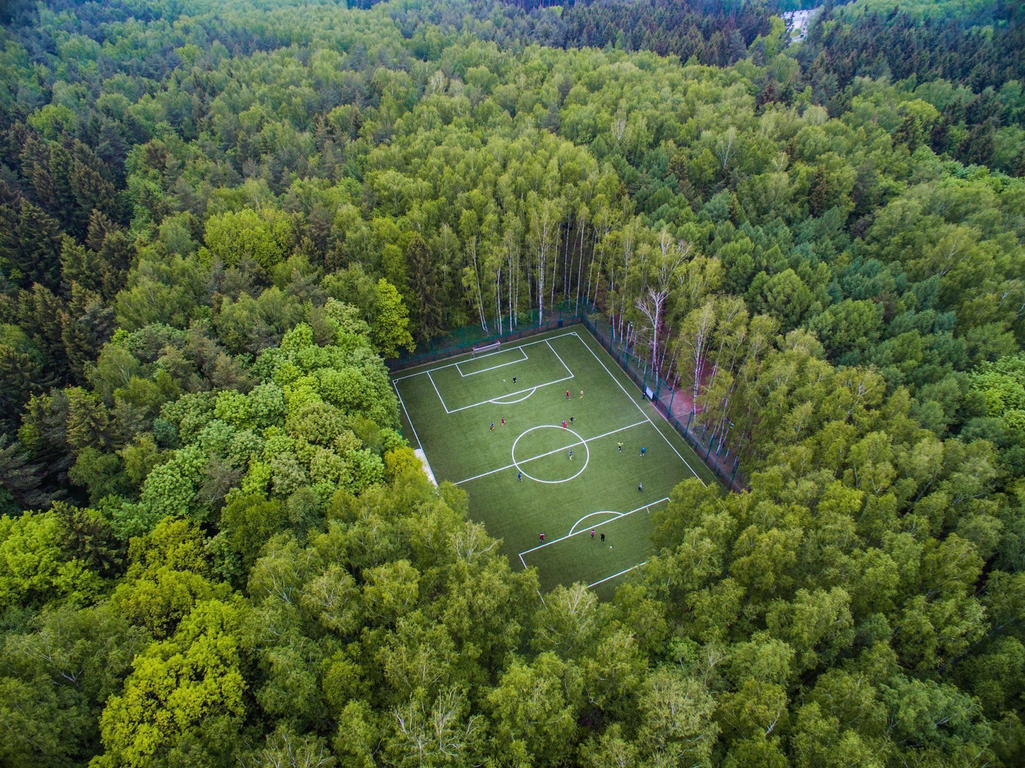 Бамбуковые щетки, гольф-поле  и зеленые мастер-классы:  как «Ташир» возводит эко-квартал будущего