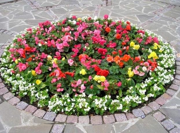 В Москве в каждом районе появится собственный садовник