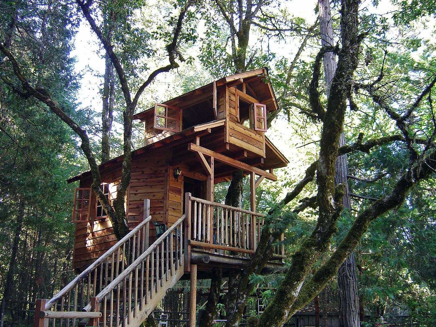 В Подмосковье откроют первый в России экоотель с домами на деревьях