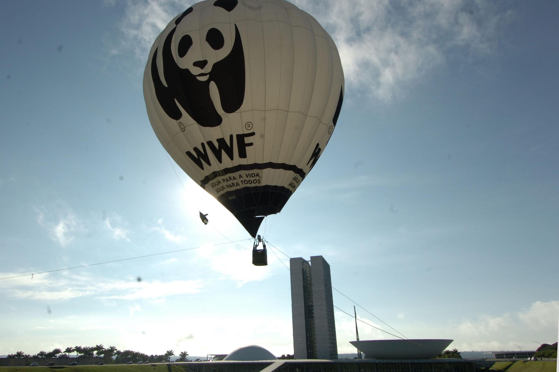 В Подмосковье будет запущена уникальная экологическая программа при поддержке Всемирного фонда дикой природы (WWF)